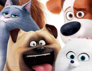 Cover image of Secret Life of Pets DVD