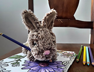 A stuffed bunny holding a pencil